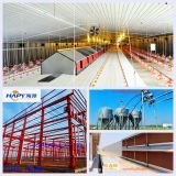 Poultry automatico Cage per Broiler e Layer con House Construction