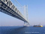 Puente de la estructura de acero de Customed de la exportación