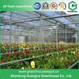 Qualitäts-Gemüse-/Blumen-Plastikfilm-Gewächshaus auf Verkauf