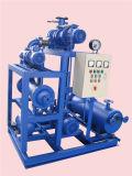물 반지 진공 펌프가 Jzj2b600-2.2.1에 의하여 뿌리박는다