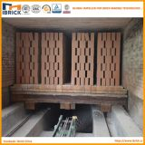 Four à tunnel de brique d'argile dans la chaîne de production de brique