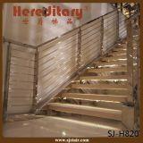 304/316 Traliewerk van de Trede van het Roestvrij staal voor Binnen (sj-S319)