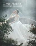 Elegante heiße Verkaufs-Markenname-Fußboden-Längen-Nixe-hohes Muffen-Hochzeits-Kleid China (WD13)
