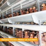 H 프레임 닭은 놓는 암탉 또는 층 또는 계란 닭을%s 용접한 철망사 감금소를 이용했다