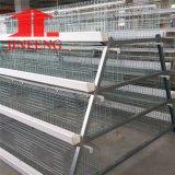 Jinfeng un tipo pollame mette a strati la gabbia del pollo con il sistema automatico completo