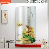 impresión del Silkscreen de la pintura de Digitaces de la imagen de la historieta de 3-19m m/vidrio templado/endurecido del grabado de pistas del modelo ácido de la seguridad para el cuarto de baño/la ducha con SGCC/Ce&CCC&ISO