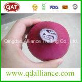 新しい皮をむかれた白く赤い紫色タマネギの球