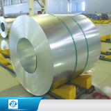 Пальто цинка поставщика Китая катушка алюминиевого стальная