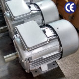 単一フェーズモーター(0.75kWHP、3000rpm、鋳鉄ハウジングB3)