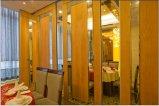 Pared de partición movible para el hotel/el restaurante/el banquete Pasillo