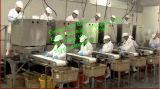 Hohe Kapazitäts-Garnele-Schalen-Maschine für Meerestier-aufbereitende Fabrik
