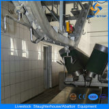 Schafe Processing und Slaughtering Equipment in Slaughterhouse