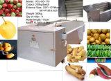 Máquina de lavar vegetal do vegetal de Apple do Radish da batata da cenoura da arruela de Bush