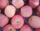 Китайцы ехпортируют стандартный свежий Apple