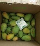 Etefone per la maturazione della frutta fresca del mango