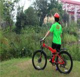 中国の安い価格の販売のための再充電可能な電子バイクEのバイク