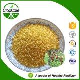 Fabbrica solubile in acqua del fertilizzante di NPK