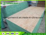 Material principal del álamo y madera contrachapada de interior del abedul del uso para el uso de los muebles