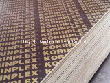 La palette embarque la catégorie du noyau combinée par colle noire aa du film WBP