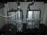 Ugelli della stazione di servizio due della benzina due visualizzazioni dell'affissione a cristalli liquidi