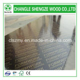 18mm Construction Film Faced Plywood