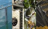 適用範囲が広いステンレス鋼ケーブルの網