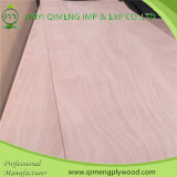 Pappel Hardwood Core Bbcc Grade 5mm Okoume Plywood für Commercial