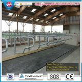 Couvre-tapis stable en caoutchouc en caoutchouc de cheval de couvre-tapis à couvre-tapis de cheval de vache de nattes stables de cheval