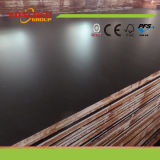 Shandong Factory 15mm Poplar Hardwood Core Dynea Film Faced Plywood