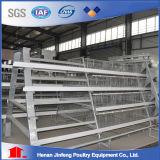 Cage de matériel de volaille de poulet de couche sur la vente en Chine