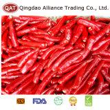 Natuurlijke Bevroren/Verse Rode Spaanse peper met Hoogste Kwaliteit