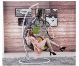 شعبيّة رخيصة سعر [رتّن] أرجوحة كرسي تثبيت [رتّن] يعلّب بيضة كرسي تثبيت ([د011ب])