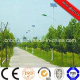 Guarniciones solares decorativas de la luz de calle para los parques y los jardines