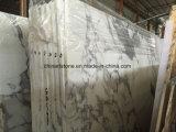 Losas y azulejos de mármol de piedra blancos de mármol comunes de Bianco Arabascata