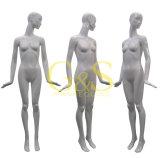 مصنع [ديركتلي سل] [فيبرغلسّ] نمو أنثى [مننقوينس] ([غس-ج-020])