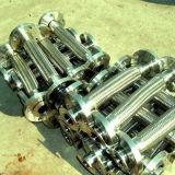 끈을%s 가진 고품질 스테인리스 304/321/316L 유연한 금속 호스 관