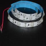 La striscia impermeabile di 12V LED presta per la casella illuminazione/del segno