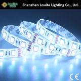 Caja de seguridad usable por las dos caras IP65 12V 60LEDs / M 5050 LED