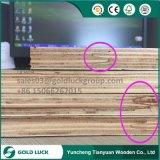 madeira compensada do Sr. Colagem Dedo Junção Núcleo da colagem de 18mm Phonolic para o uso do molde