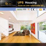 Casa prefabricada viva con las buenas decoraciones