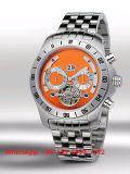 Het Horloge van prachtige Automatische Mensen met de Riem Fs558 van het Roestvrij staal