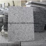 G603/mattonelle di pavimentazione grige bianche del granito per la decorazione