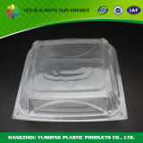 Wegwerfversiegelbarer Nahrungsmittelplastikbehälter