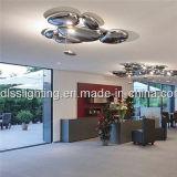 Plafonniers acryliques de l'art DEL en métal contemporain pour des projets d'hôtel