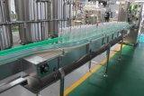 De volledige Automatische het Vullen van het Water van Aquafina van de Fles van het Huisdier Installatie van de Lopende band