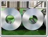 Fabricante de acero galvanizado sumergido caliente de la bobina