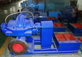 Ots 시리즈 양쪽 흡입 축 균열 소용돌이 모양 케이싱 수력 전기 Carboncentrifugal 펌프