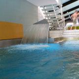 Cascada de la piscina de la boca del pato del acero inoxidable del BALNEARIO de la piscina