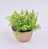 Plantas novas do estilo no potenciômetro de papel de Mache para a decoração do escritório