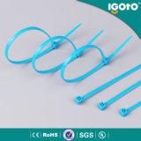 Blauer Nylonkabelbinder für Drähte